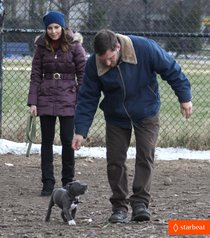 Съемки фильма «Animal Rescue»: Том Харди и Нуми Рапас: tom-hardy-escape-from-new-york-star-contender-01_Starbeat.ru