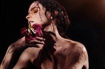 Эмма Уотсон в фотосессии «Natural Beauty»: emma-watson-1_Starbeat.ru