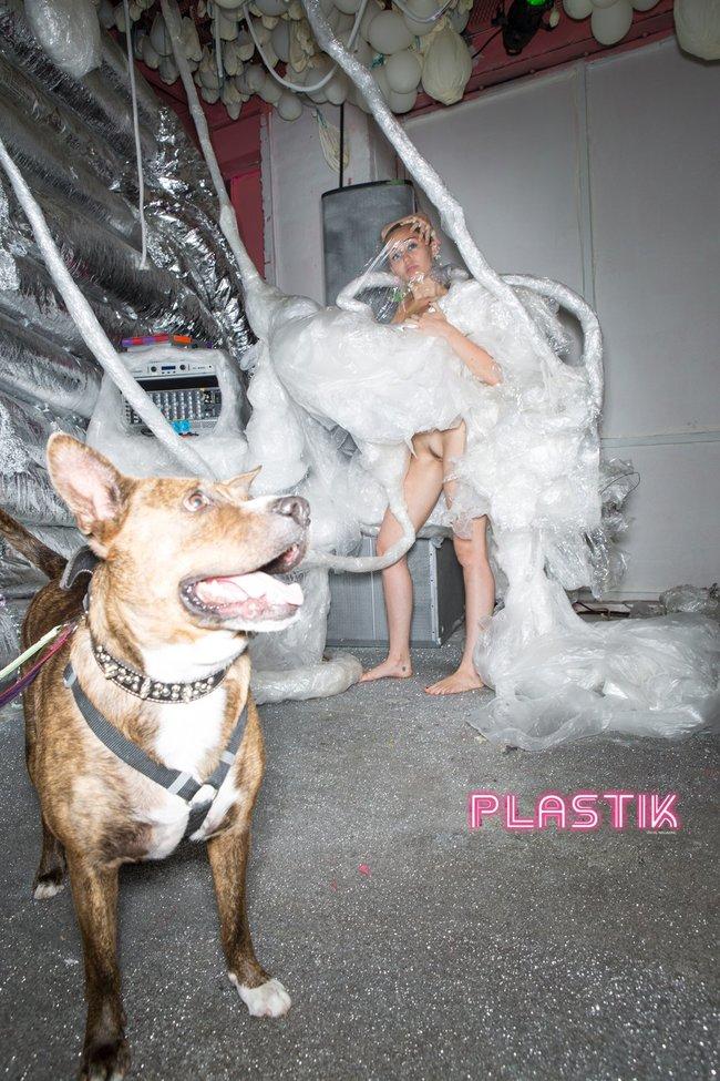 Голая Майли Сайрус окончательно потеряла стыд на страницах Plastik Magazine: miley-cyrus-1_Starbeat.ru