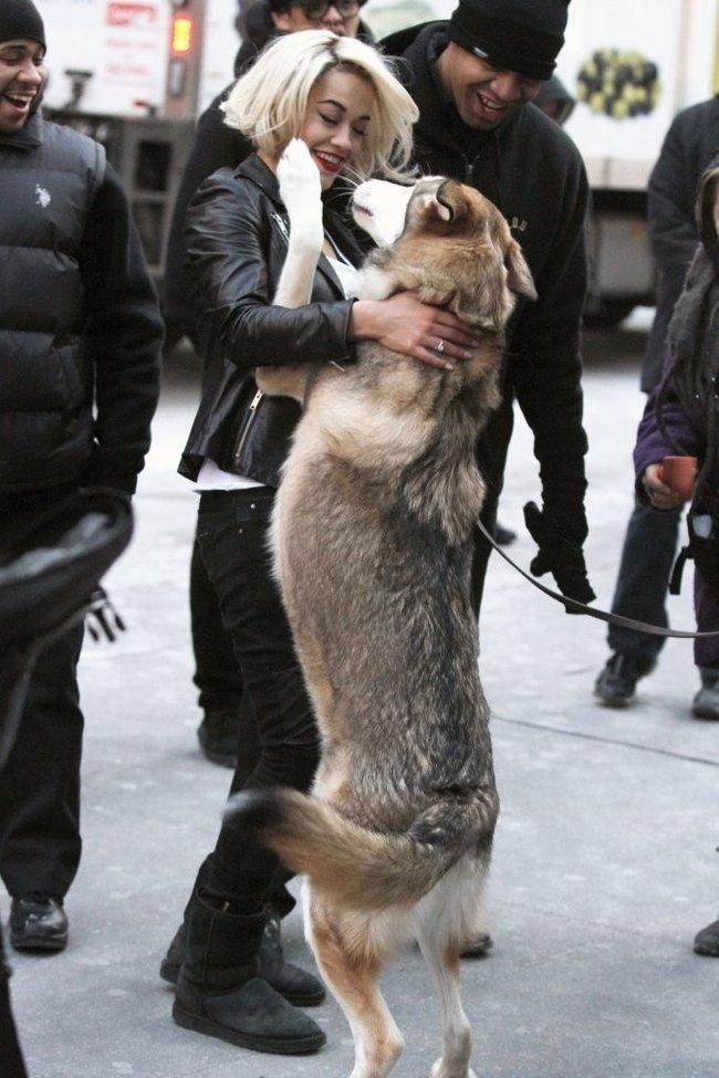 Рита Ора на съемках рекламы для «DKNY» в Нью-Йорке: rita-ora---on-set-of-a-dkny-in-nyc--03_Starbeat.ru